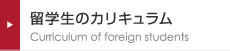 留学生のカリキュラム Curriculum of foreign students